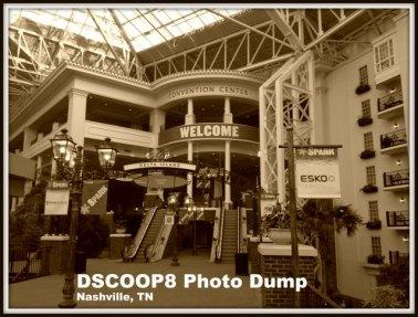 DSCOOP8