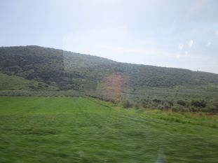 Galilee was green and lush